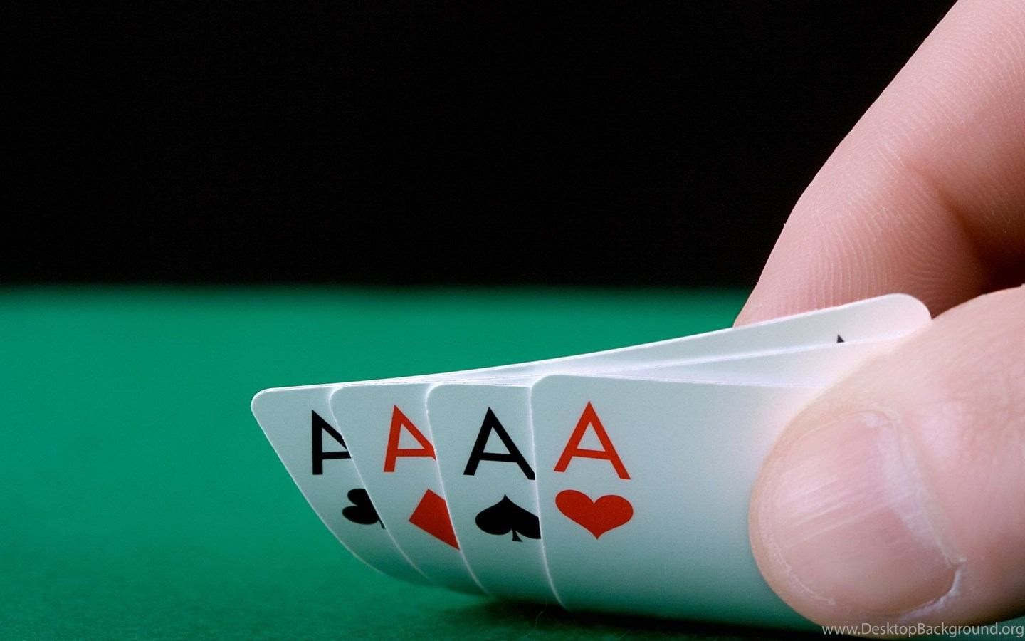 Gaming And Casino Operations Administration